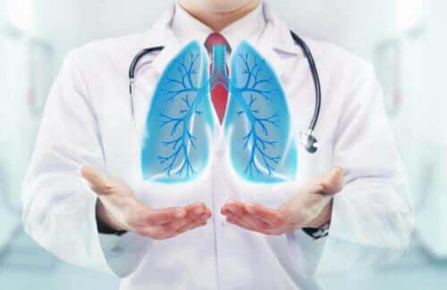 Γιατρός κρατά εικονικούς πνεύμονες