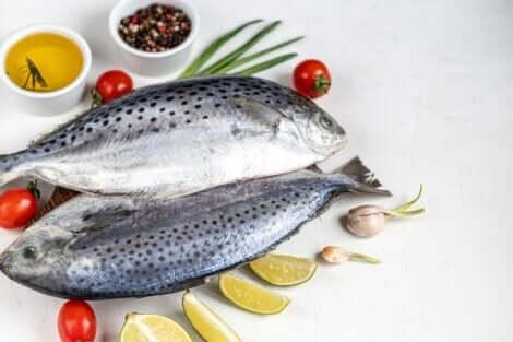 Τα τέσσερα είδη διατροφής που υποστηρίζει η επιστήμη