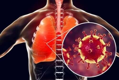 Απεικόνιση μολυσμένων πνευμόνων
