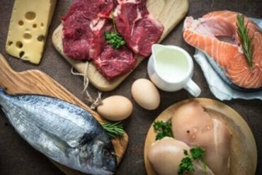 Γιατί είναι τόσο σημαντική η κατανάλωση πρωτεϊνών;