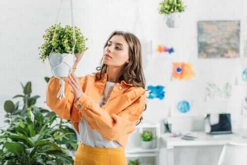 Πώς να φτιάξετε κρεμαστές γλάστρες για τα φυτά σας