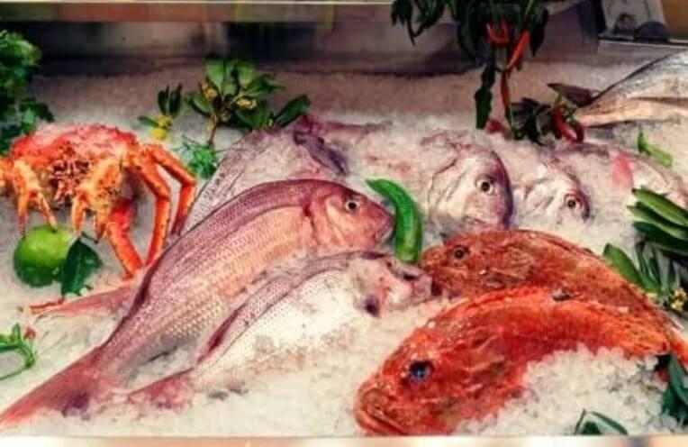 Οι επιπτώσεις του υδραργύρου στα ψάρια