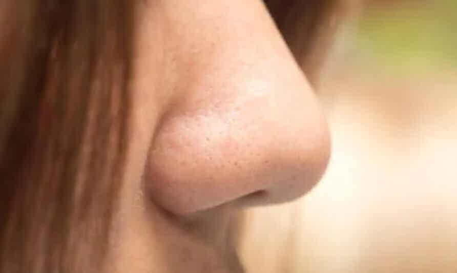 Οι διαφορετικοί τύποι μύτης: Ποιος είναι ο δικός σας;