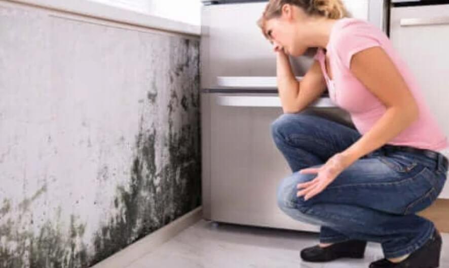 Μπορεί η μούχλα στο σπίτι να οδηγήσει σε προβλήματα υγείας;