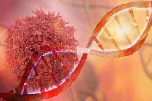 Αλυσίδα DNA και καρκινικό κύτταρο