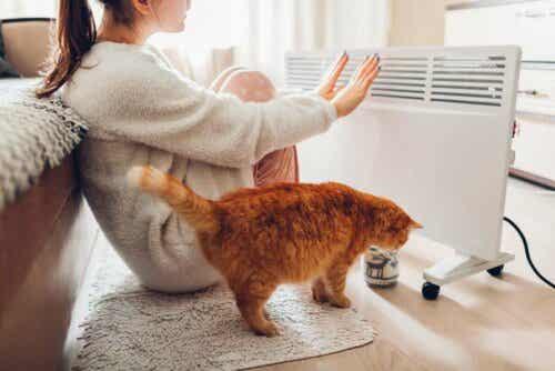 Γυναίκα και γάτα μπροστά από ηλεκτρικό σύστημα θέρμανσης