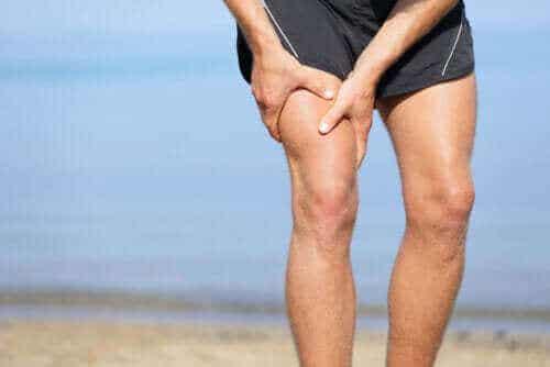Ο μακρύτερος μυς του σώματος: Ο ραπτικός μυς