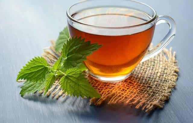 Τσάι από βότανο καρμίνη