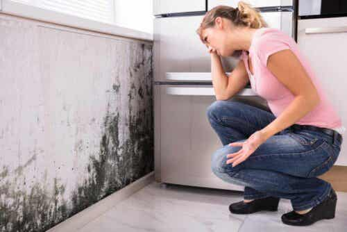 Γυναίκα κοιτά τη μούχλα στον τοίχο
