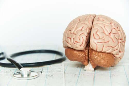 Πώς επηρεάζει τον εγκέφαλο η έλλειψη ξεκούρασης