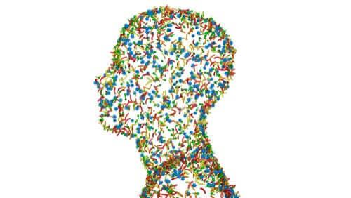 Οι άνθρωποι ως υπεροργανισμοί: Τι εννοούμε;