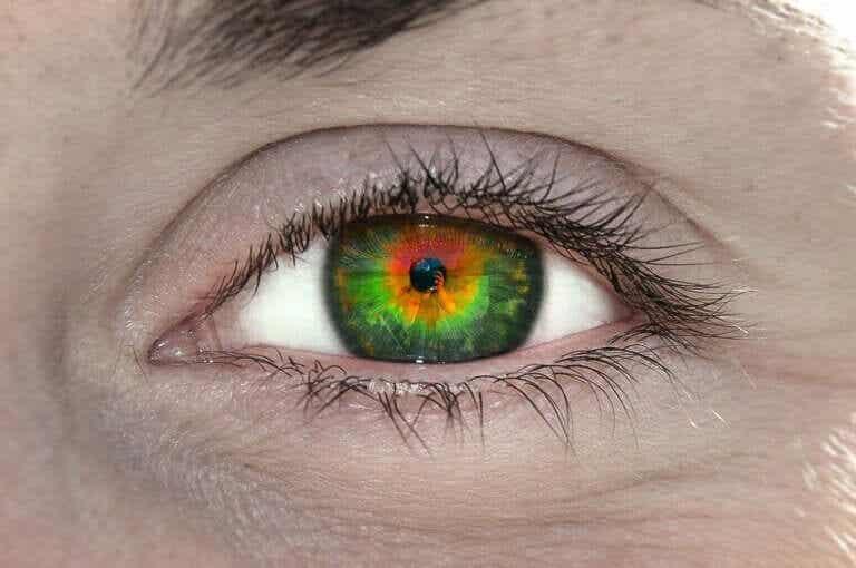 Τι είναι η τετραχρωμία και τι σημαίνει για σας;