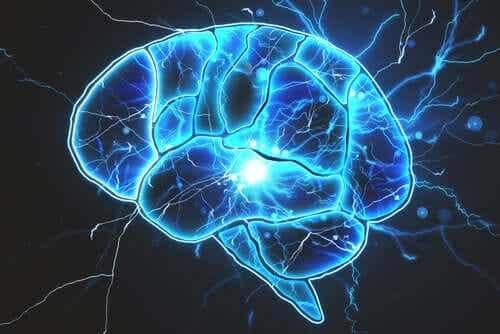 Υπάρχουν τελικά βακτήρια στον εγκέφαλο;